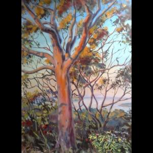 Sunset on the Gums